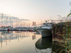 Bild 0019 | Hafen am Geiseltalsee