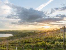 Bild 0010 | Sonnenuntergang am Geiseltalsee