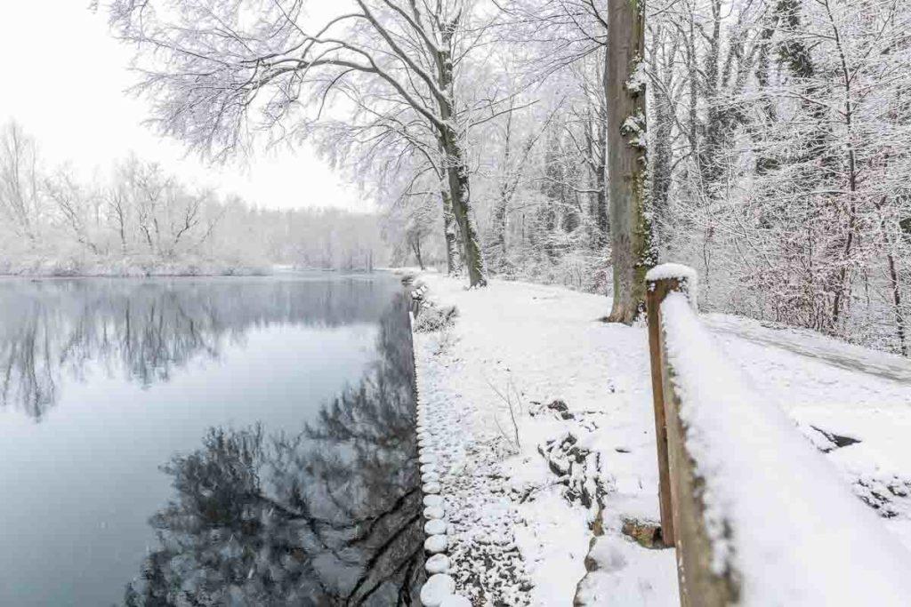 Mühlteich Spiegelung der Bäume