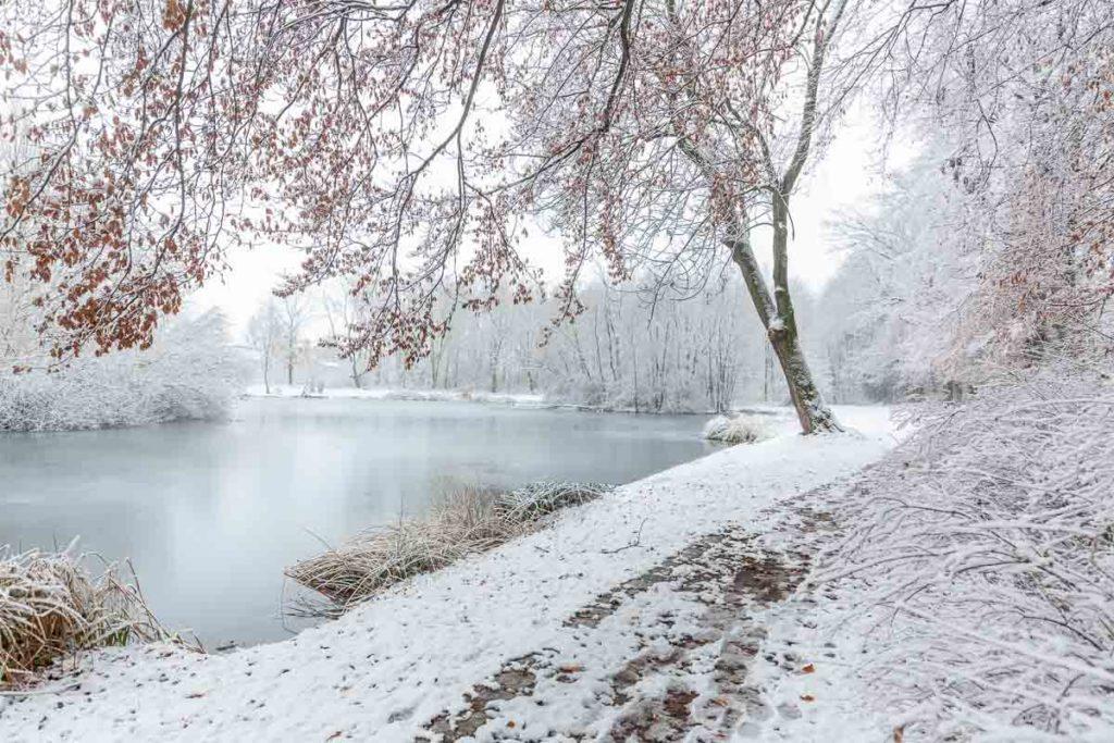 Schnee am Mühlteich Braunsbedra