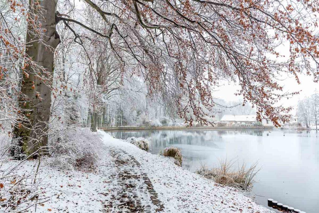 Schnee im Geiseltal