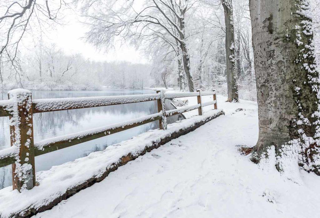 Schneebedeckte Landschaft mit Teich